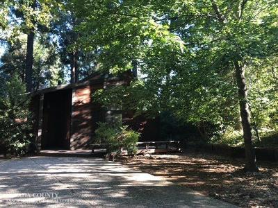 Nevada City Single Family Home For Auction: 16796 Pasquale Road