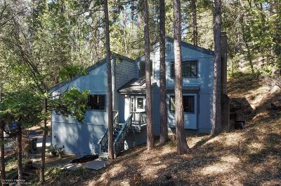 Nevada City Single Family Home For Sale: 157 Grove Street