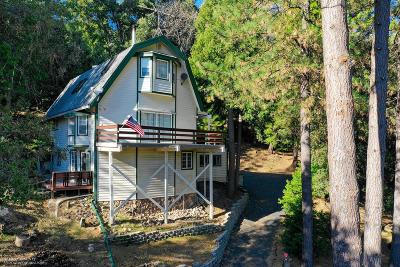 Nevada City Single Family Home For Sale: 13829 Gas Canyon Road