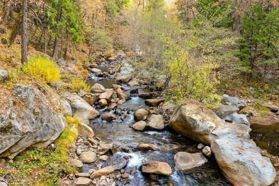 Nevada County Residential Lots & Land For Sale: 377 Wyoming Road