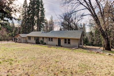 Nevada County Single Family Home For Sale: 12694 Judd Lane