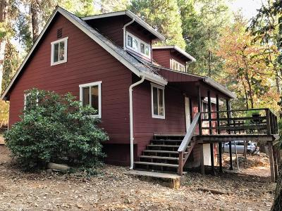 Nevada City Single Family Home For Sale: 13860 Winding Way Way