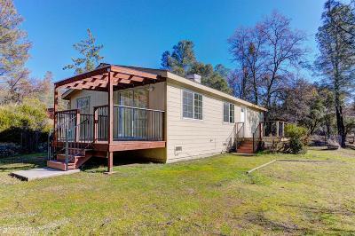 Nevada County Single Family Home For Sale: 12876 Jones Bar Road