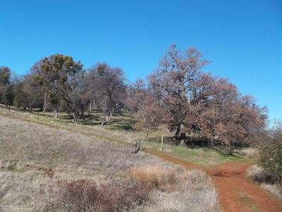 Nevada County Residential Lots & Land For Sale: Big Springs Road