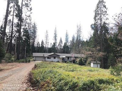 Grass Valley Single Family Home For Sale: 14169 Wilder Lane