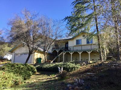 Nevada County Single Family Home For Sale: 16875 George Way
