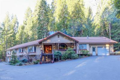 Nevada City Single Family Home For Sale: 13760 Willow Valley Road
