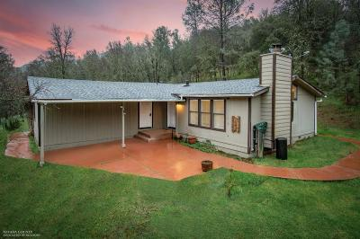 Grass Valley Single Family Home For Sale: 18985 Dotties Place