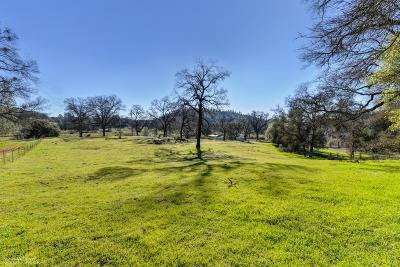 Grass Valley Residential Lots & Land For Sale: 10224 Carriage Road
