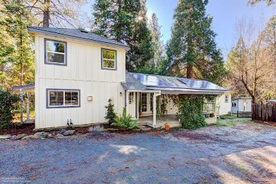 Nevada City Single Family Home For Sale: 436 Clay Street