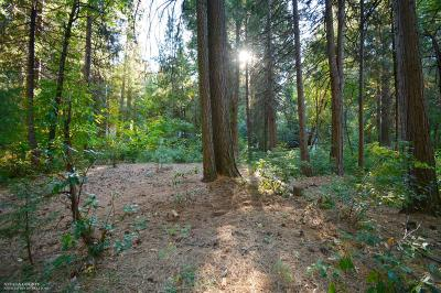 Nevada City Residential Lots & Land For Sale: 15539 Cascade Loop