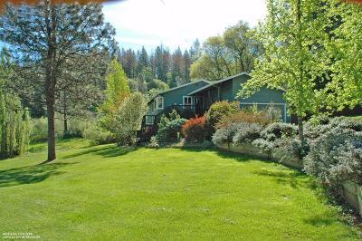 Nevada County Single Family Home For Sale: 11146 Ragan Way