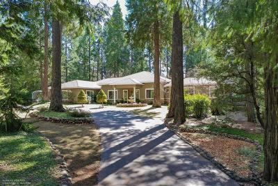 Nevada City Single Family Home For Sale: 14567 Idaho Maryland Road