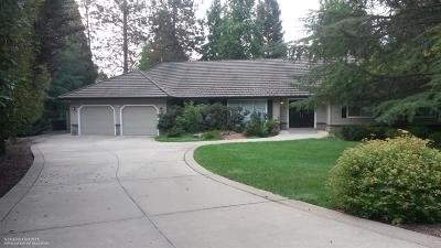 Grass Valley Single Family Home For Sale: 10709 West View Way