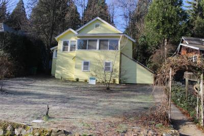Grass Valley Single Family Home For Sale: 327 Race Street