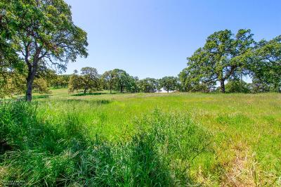 Nevada County Residential Lots & Land For Sale: 20760 White Oak Drive