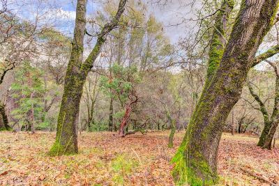 Nevada County Residential Lots & Land For Sale: 16428 Patricia Way