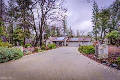 Nevada City Single Family Home For Sale: 10735 Morning Star Lane
