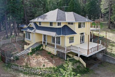 Nevada City Single Family Home For Sale: 14052 Wings Of Morning Drive
