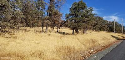 Grass Valley, Smartsville Residential Lots & Land For Sale: 24226 Restive Way