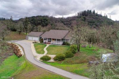 Grass Valley Single Family Home For Sale: 16736 Dog Bar Road