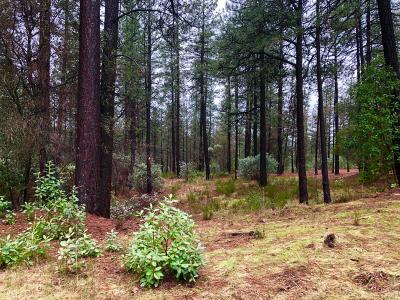 Nevada City Residential Lots & Land For Sale: 10441 Buffington Court