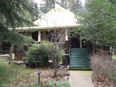 Grass Valley Single Family Home For Sale: 203 Race Street