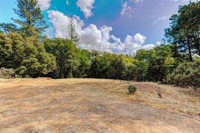 Nevada City Residential Lots & Land For Sale: 16856 Red Dog Road