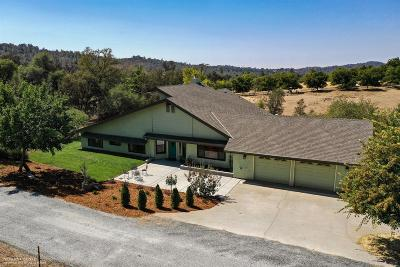 Grass Valley Single Family Home For Sale: 14484 Lime Kiln Road