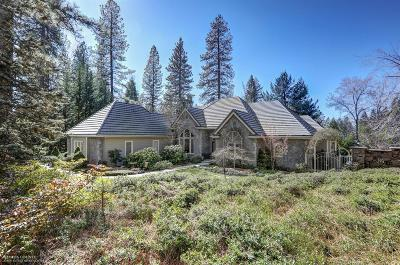 Grass Valley Single Family Home For Sale: 12869 Chatsworth Lane