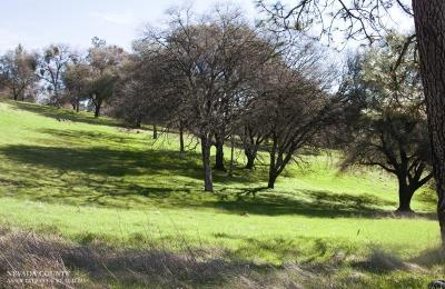 Grass Valley Residential Lots & Land For Sale: 21910 Angeli Place
