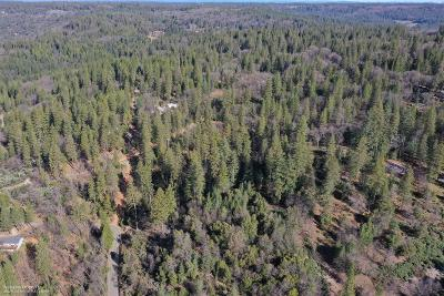 Grass Valley Residential Lots & Land For Sale: 14751 Orzalli Road