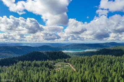 Nevada County Residential Lots & Land For Sale: 21603 State Highway 20 Highway
