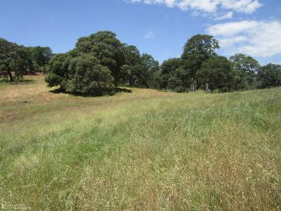 Grass Valley Residential Lots & Land For Sale: 19711 Peyton Place