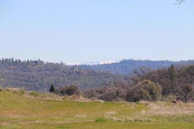 Grass Valley Residential Lots & Land For Sale: 15185 Wolf Ridge Court