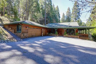 Nevada City Single Family Home For Sale: 11500 Forester Drive