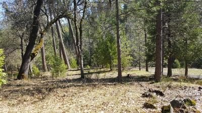 Nevada City Residential Lots & Land For Sale: 12506 Discovery Way