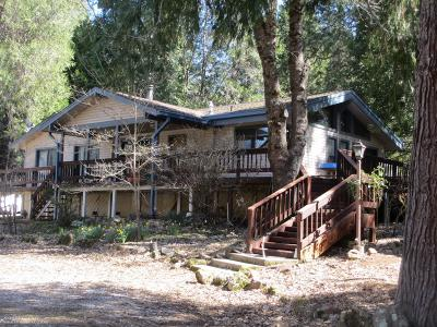 Grass Valley Single Family Home For Sale: 18277 Spring Valley Drive
