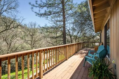 Nevada County Single Family Home For Sale: 16832 Brewer Road