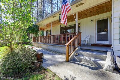 Grass Valley, Smartsville Single Family Home For Sale: 10335 Mercury Drive