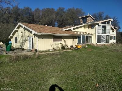 Penn Valley Single Family Home For Sale: 13700 Falling Leaf Lane