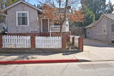 Grass Valley, Smartsville Single Family Home For Sale: 113 Race Street