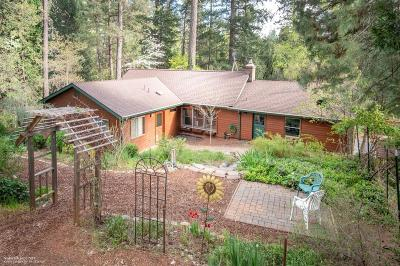 Grass Valley Single Family Home For Sale: 14067 Linden Road