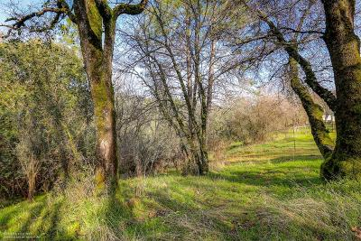 Grass Valley Residential Lots & Land For Sale: 17404 Winding Oaks Road