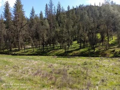 Grass Valley Residential Lots & Land For Sale: 17198 Dog Bar Road