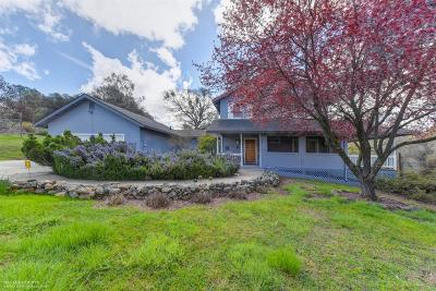 Grass Valley, Smartsville Single Family Home For Sale: 15345 Perimeter Road