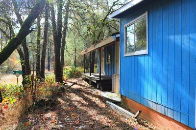 Grass Valley Single Family Home For Sale: 20340 Gunstock Road