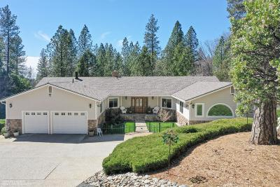 Grass Valley Single Family Home For Sale: 10730 Glenbrook Estates Court