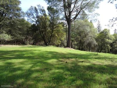 Grass Valley Residential Lots & Land For Sale: 21109 Adamson Road