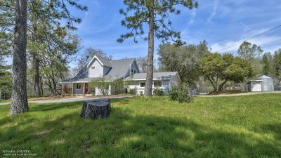 Nevada City Single Family Home For Sale: 17610 Shoshoni Trail Court